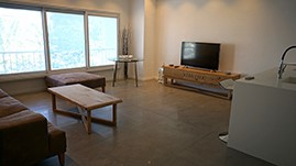 Spacious and renovated apartment